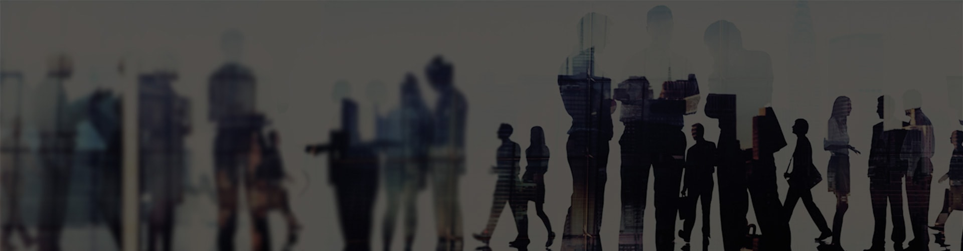 IBM i experts to help you maintain, develop, and modernize your IBM i applications